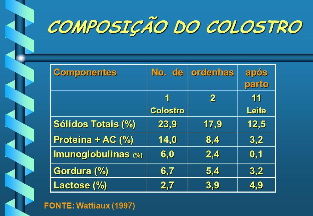 COMPOSIÇÃO DO COLOSTRO