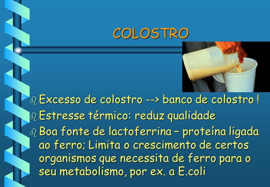 COLOSTRO Excesso de colostro --> banco de colostro !