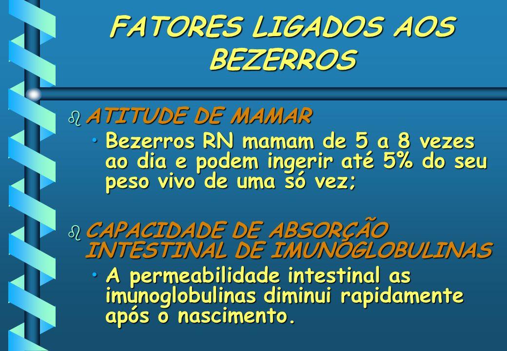 FATORES LIGADOS AOS BEZERROS