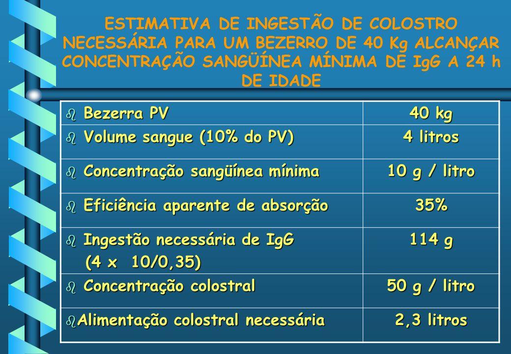 ESTIMATIVA DE INGESTÃO DE COLOSTRO NECESSÁRIA PARA UM BEZERRO DE 40 Kg ALCANÇAR CONCENTRAÇÃO SANGÜÍNEA MÍNIMA DE IgG A 24 h DE IDADE