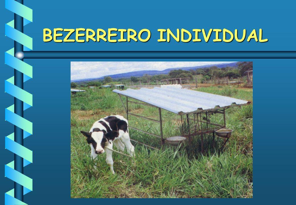 BEZERREIRO INDIVIDUAL