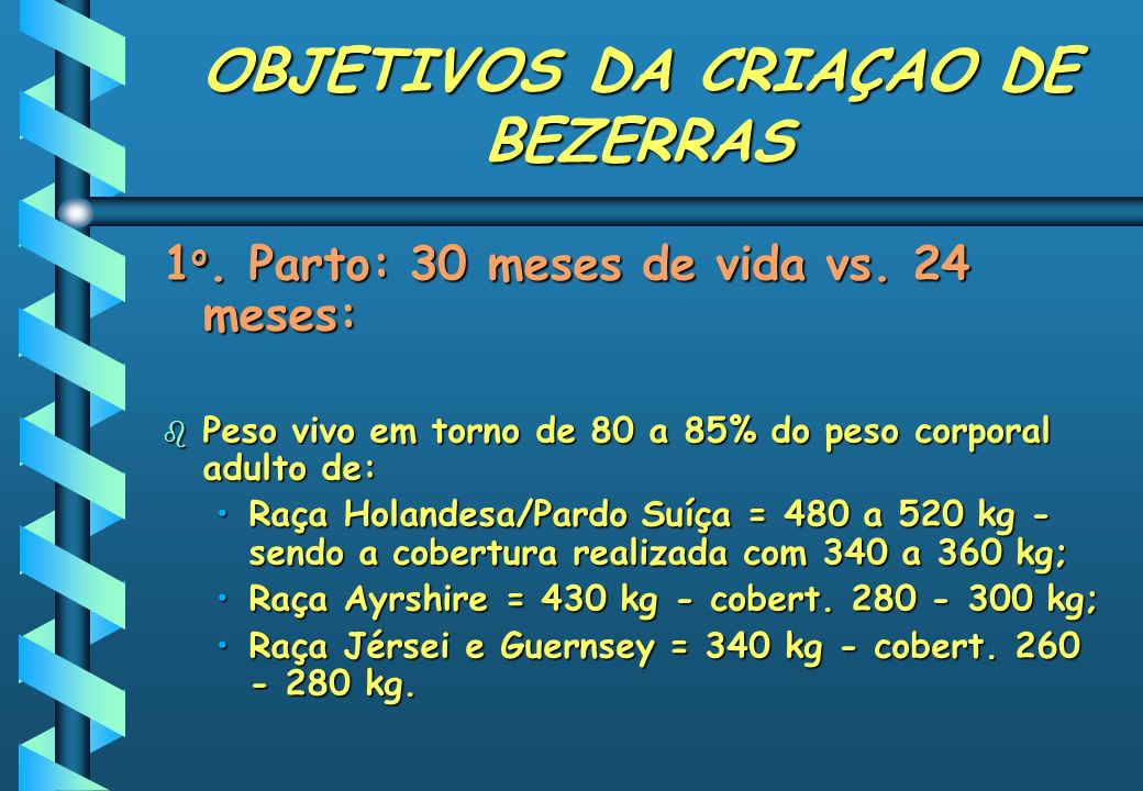 OBJETIVOS DA CRIAÇAO DE BEZERRAS