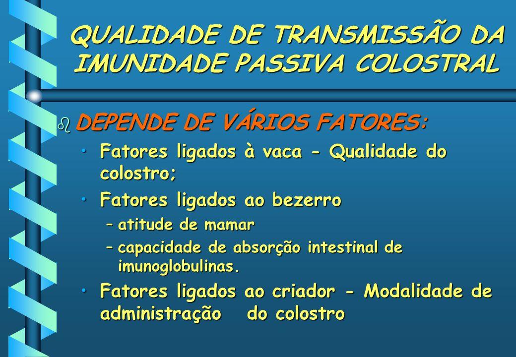 QUALIDADE DE TRANSMISSÃO DA IMUNIDADE PASSIVA COLOSTRAL