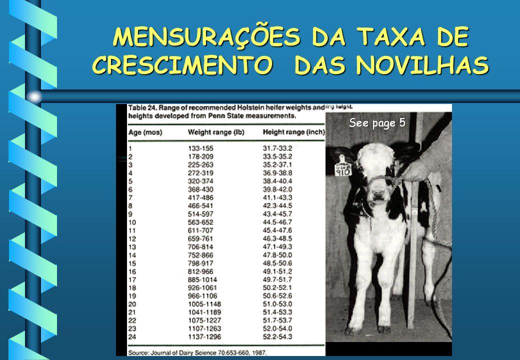 MENSURAÇÕES DA TAXA DE CRESCIMENTO DAS NOVILHAS