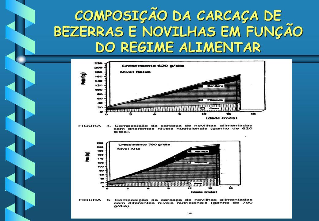 COMPOSIÇÃO DA CARCAÇA DE BEZERRAS E NOVILHAS EM FUNÇÃO DO REGIME ALIMENTAR