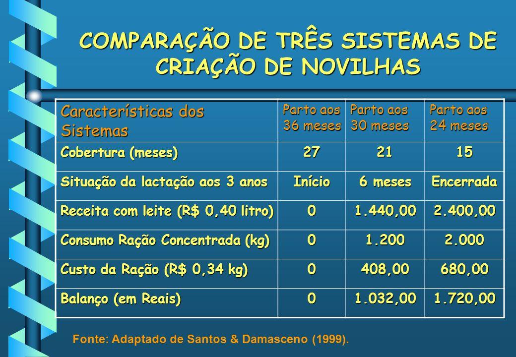 COMPARAÇÃO DE TRÊS SISTEMAS DE CRIAÇÃO DE NOVILHAS