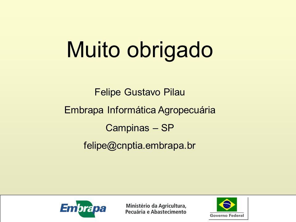 Embrapa Informática Agropecuária