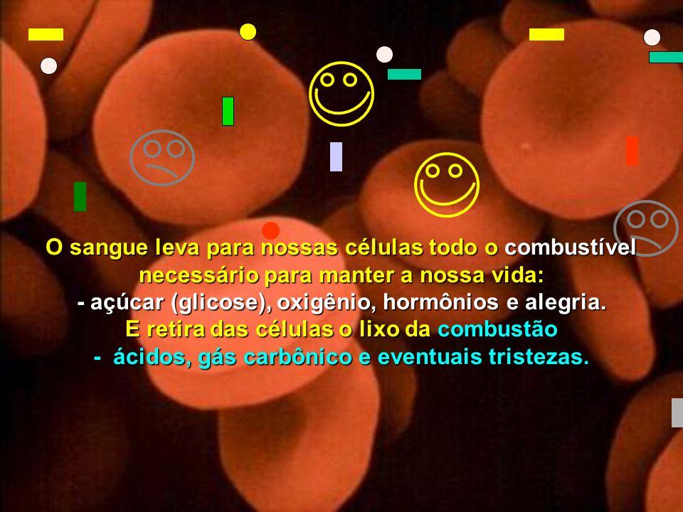 - açúcar (glicose), oxigênio, hormônios e alegria.