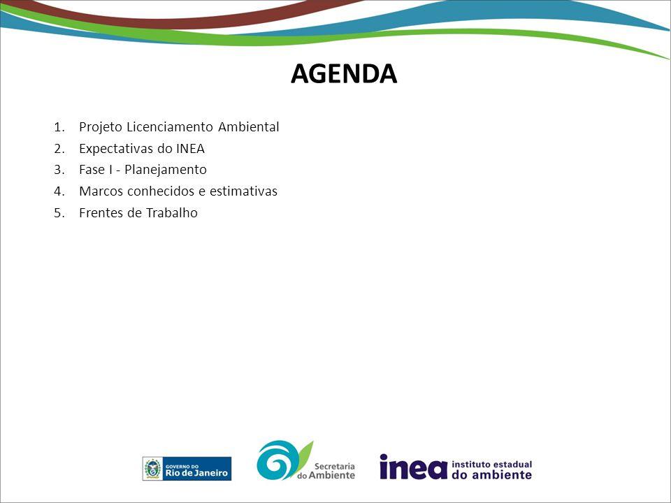 AGENDA Projeto Licenciamento Ambiental Expectativas do INEA