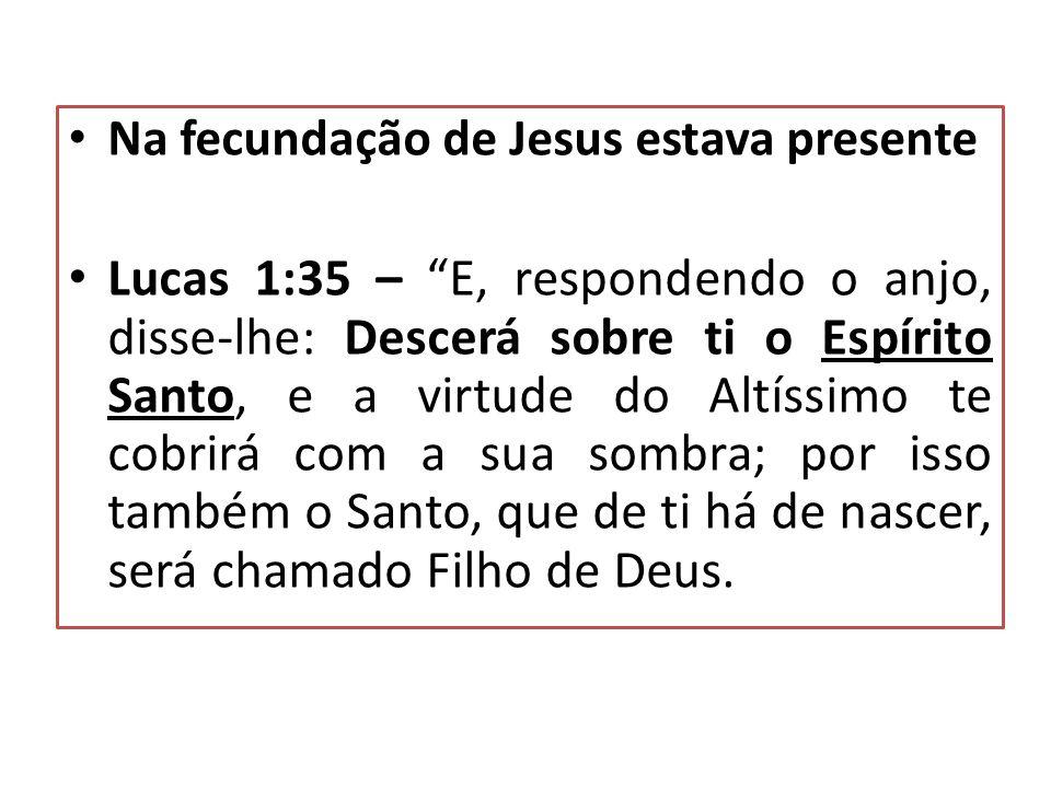 Na fecundação de Jesus estava presente