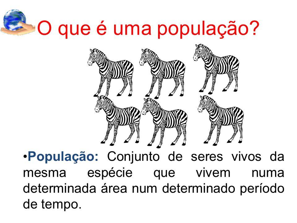 O que é uma população.