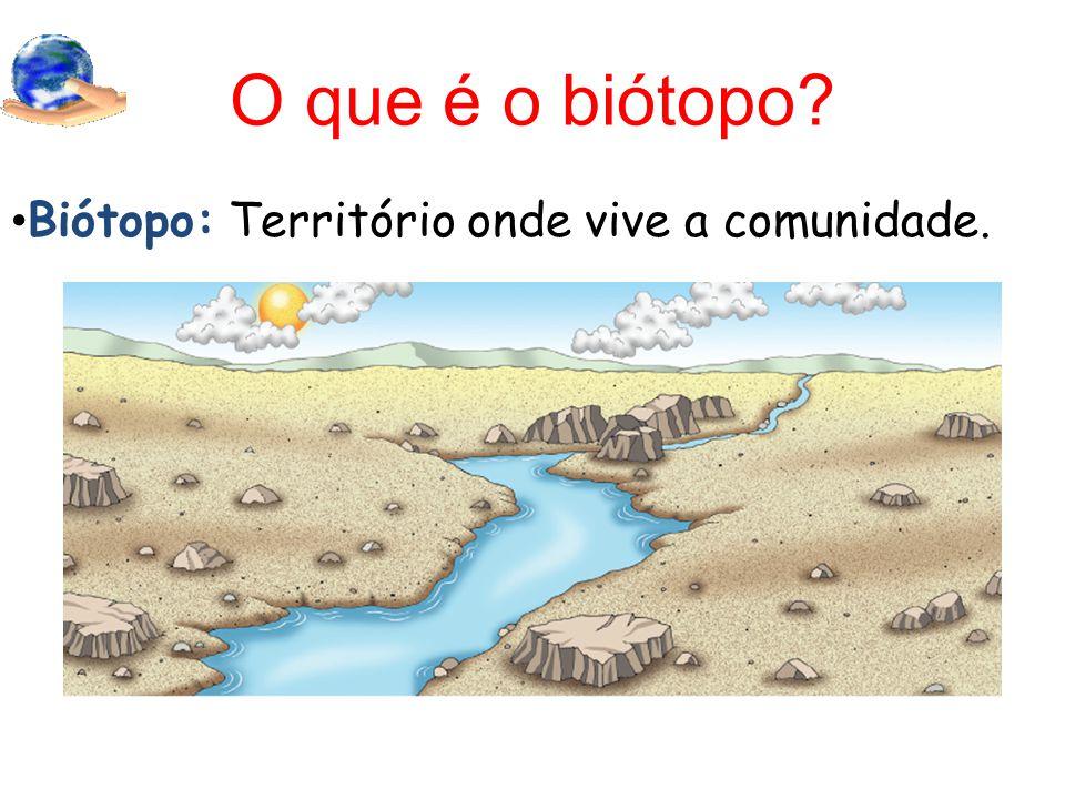 O que é o biótopo Biótopo: Território onde vive a comunidade.