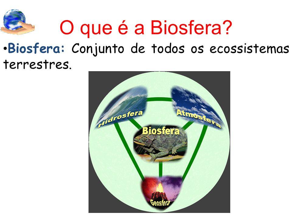 O que é a Biosfera Biosfera: Conjunto de todos os ecossistemas terrestres.