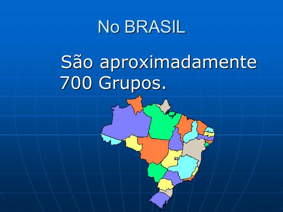 No BRASIL São aproximadamente 700 Grupos.