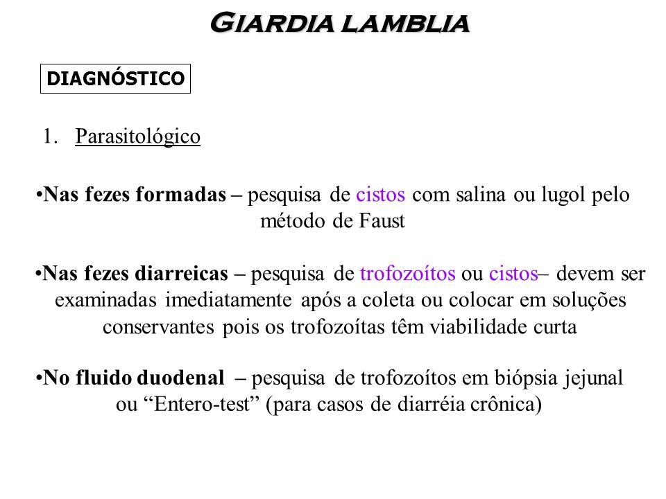 Giardia lamblia Parasitológico