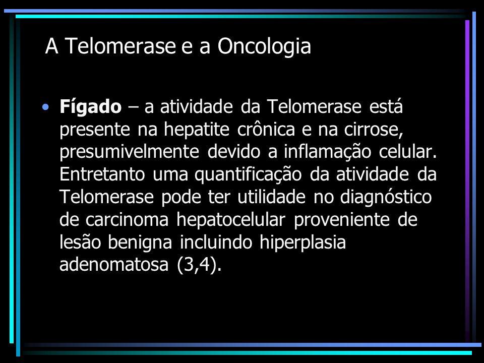 A Telomerase e a Oncologia