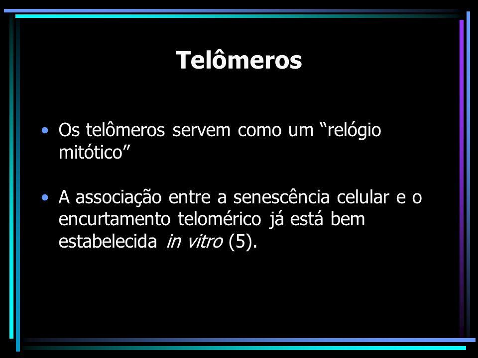 Telômeros Os telômeros servem como um relógio mitótico