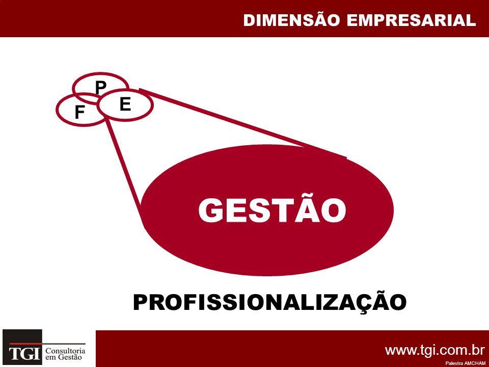 DIMENSÃO EMPRESARIAL F P E GESTÃO PROFISSIONALIZAÇÃO