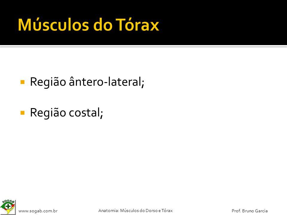 Músculos do Tórax Região ântero-lateral; Região costal;