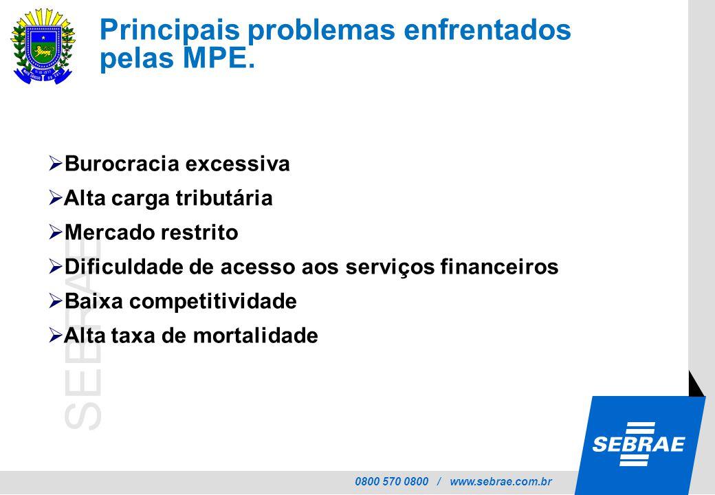 Principais problemas enfrentados pelas MPE.
