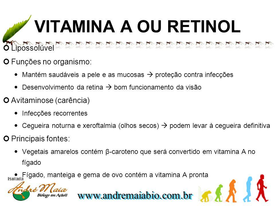 VITAMINA A OU RETINOL Lipossolúvel Funções no organismo: