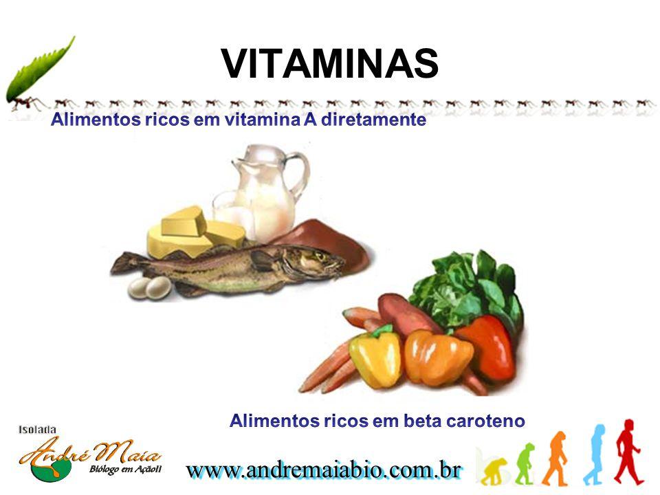 VITAMINAS Alimentos ricos em vitamina A diretamente