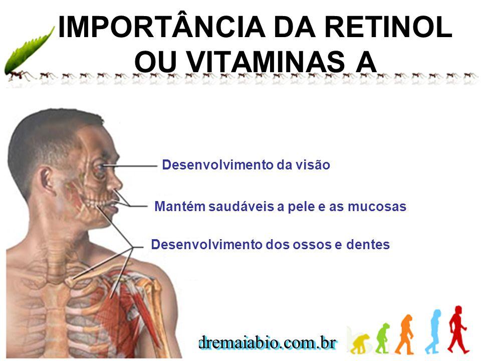 IMPORTÂNCIA DA RETINOL OU VITAMINAS A