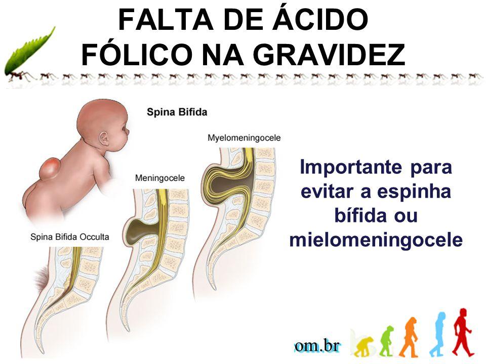 FALTA DE ÁCIDO FÓLICO NA GRAVIDEZ