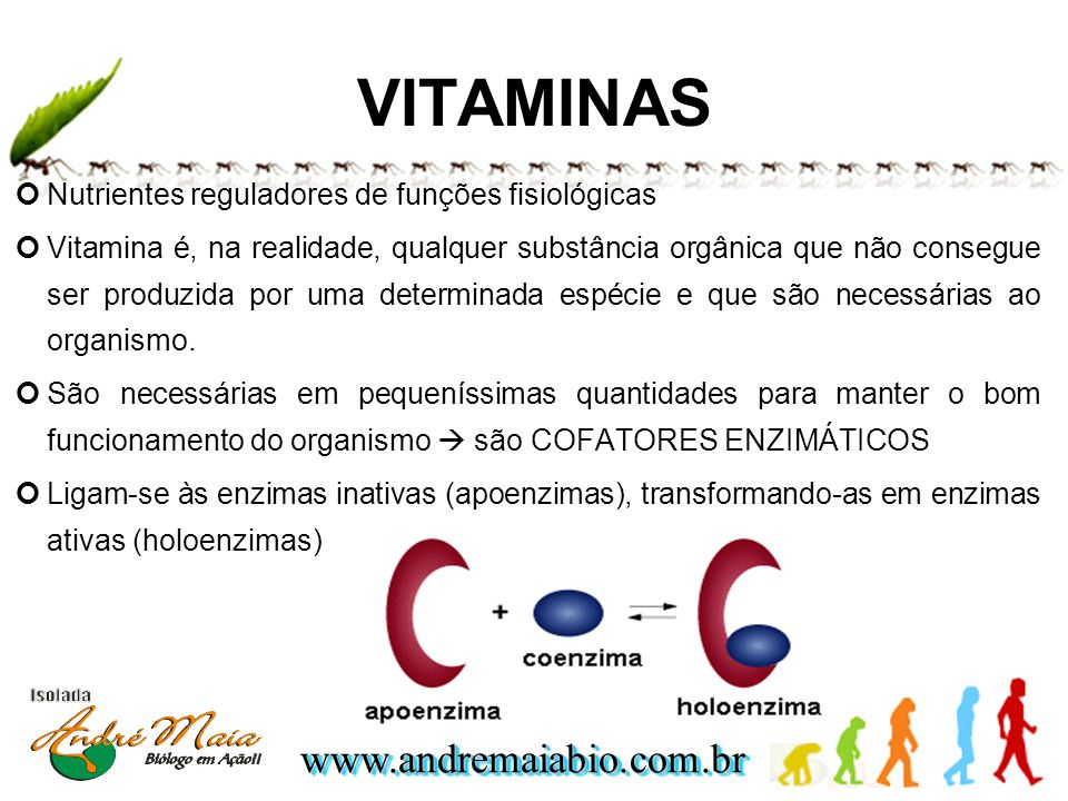 VITAMINAS Nutrientes reguladores de funções fisiológicas