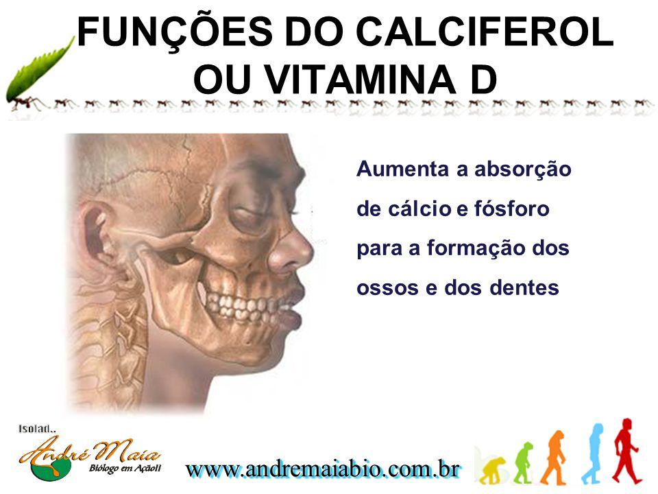 FUNÇÕES DO CALCIFEROL OU VITAMINA D