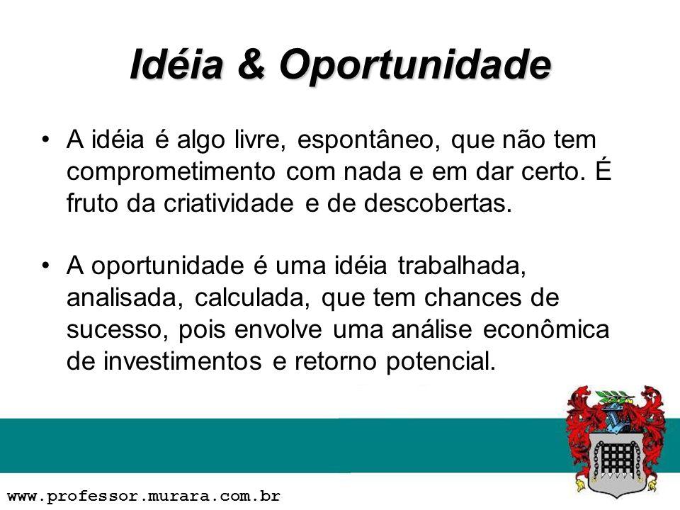 Idéia & Oportunidade A idéia é algo livre, espontâneo, que não tem comprometimento com nada e em dar certo. É fruto da criatividade e de descobertas.