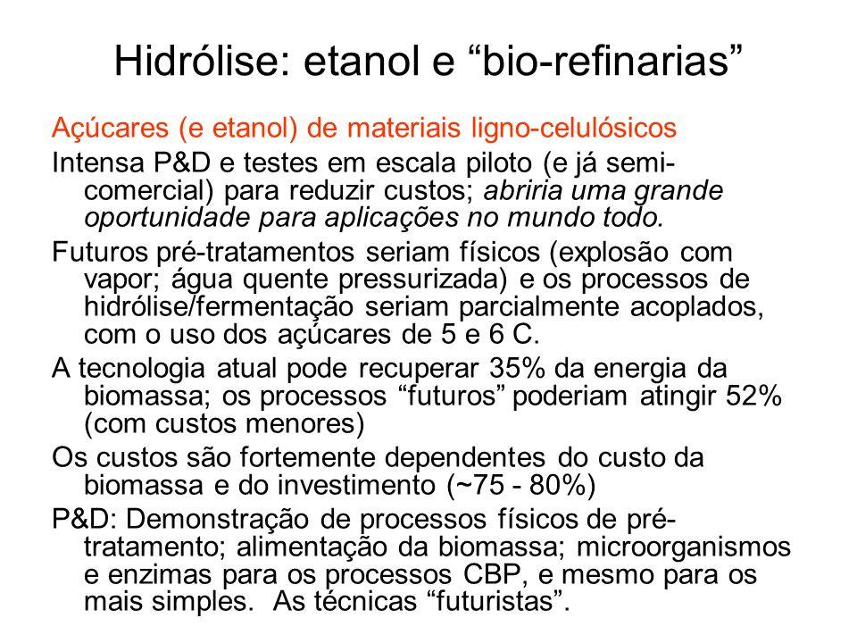 Hidrólise: etanol e bio-refinarias