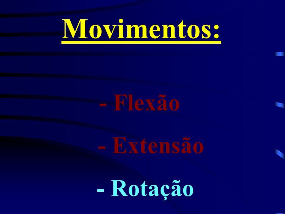Movimentos: - Flexão - Extensão - Rotação