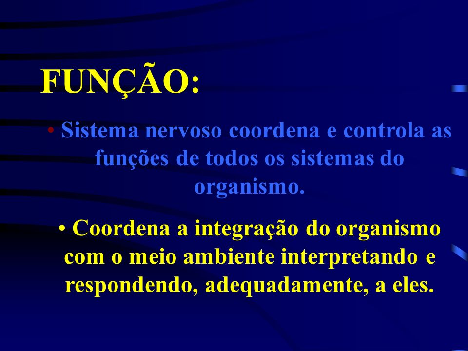 FUNÇÃO:Sistema nervoso coordena e controla as funções de todos os sistemas do organismo.