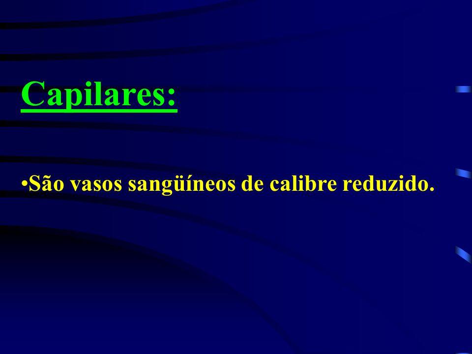 Capilares: São vasos sangüíneos de calibre reduzido.