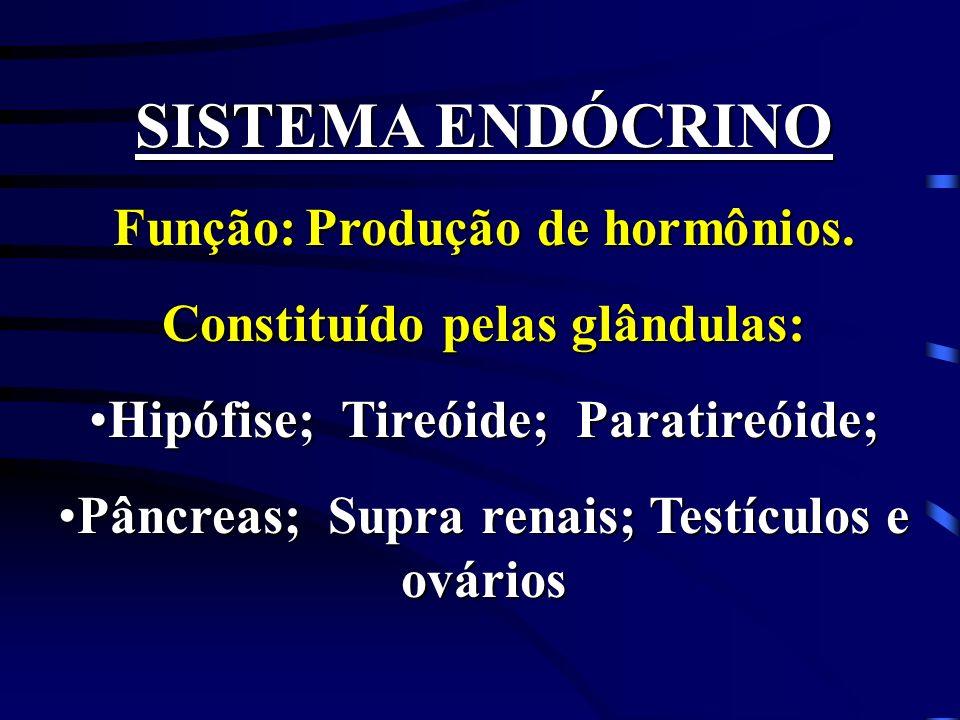 SISTEMA ENDÓCRINO Função: Produção de hormônios.