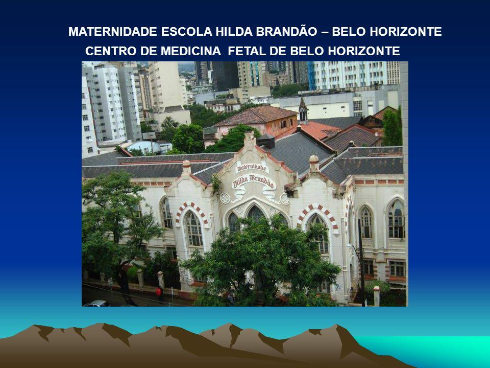 MATERNIDADE ESCOLA HILDA BRANDÃO – BELO HORIZONTE