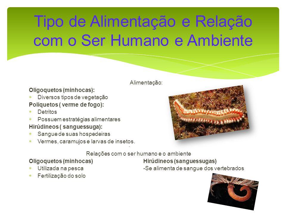 Tipo de Alimentação e Relação com o Ser Humano e Ambiente
