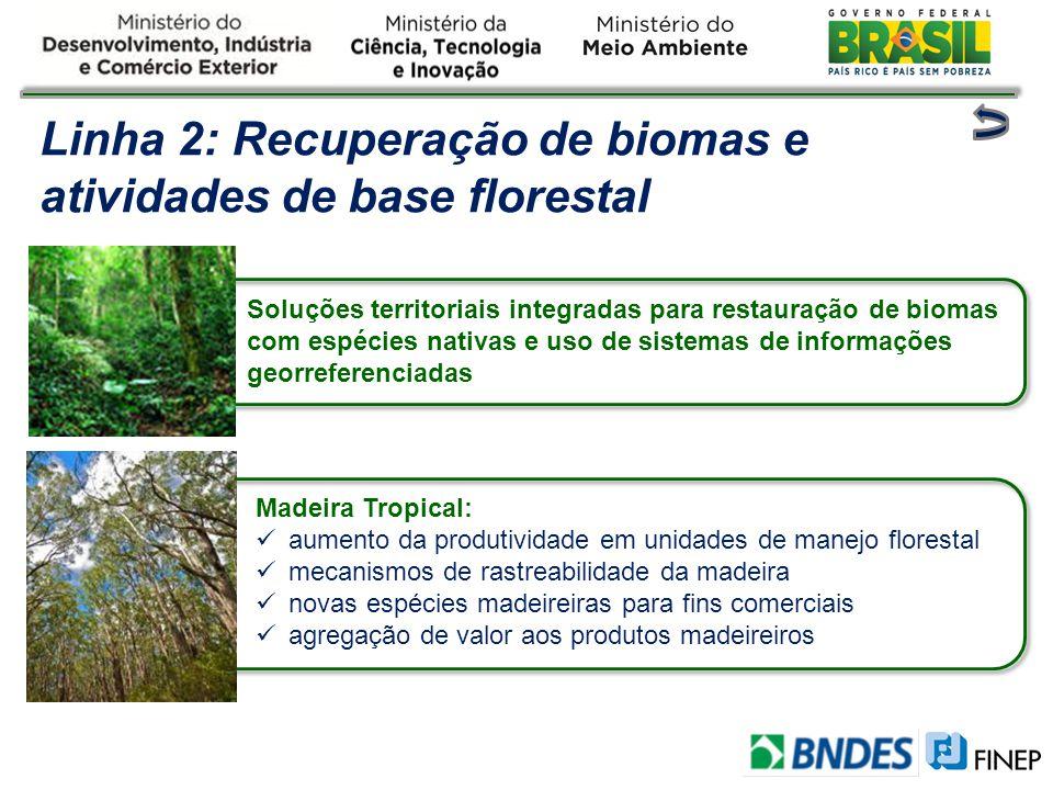Linha 2: Recuperação de biomas e atividades de base florestal