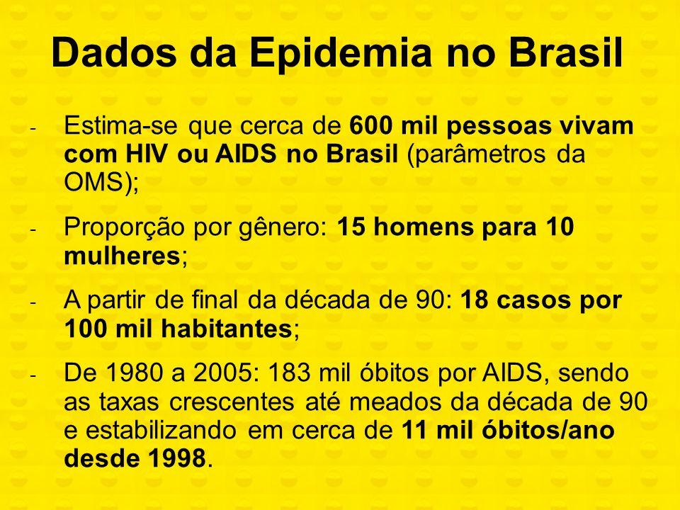 Dados da Epidemia no Brasil