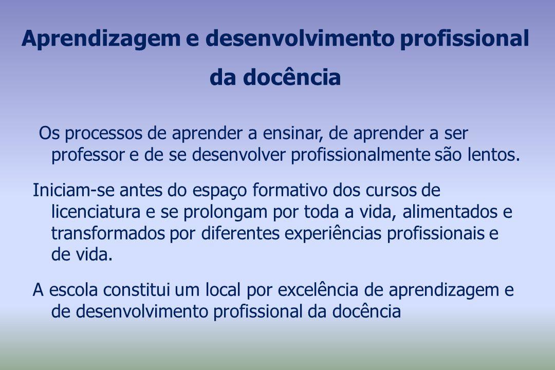 Aprendizagem e desenvolvimento profissional da docência