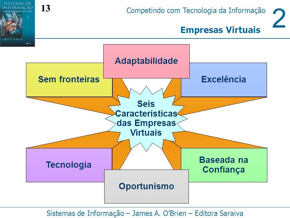 13 Empresas Virtuais Adaptabilidade Sem fronteiras Excelência Seis