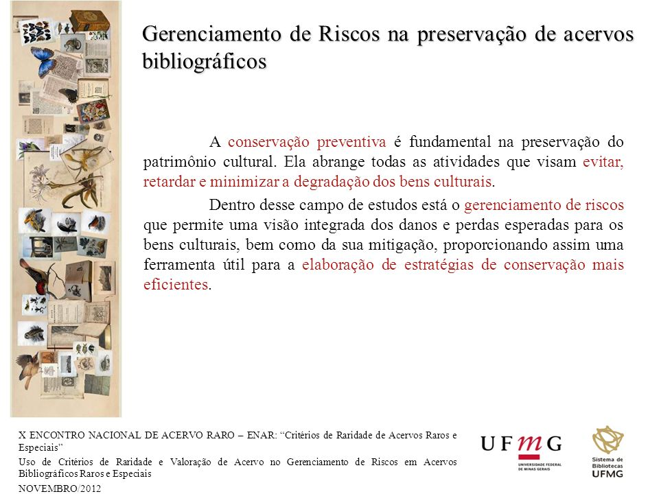Gerenciamento de Riscos na preservação de acervos bibliográficos