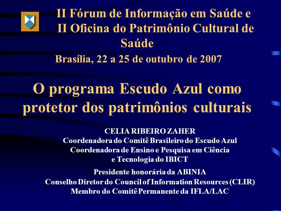 Coordenadora do Comitê Brasileiro do Escudo Azul
