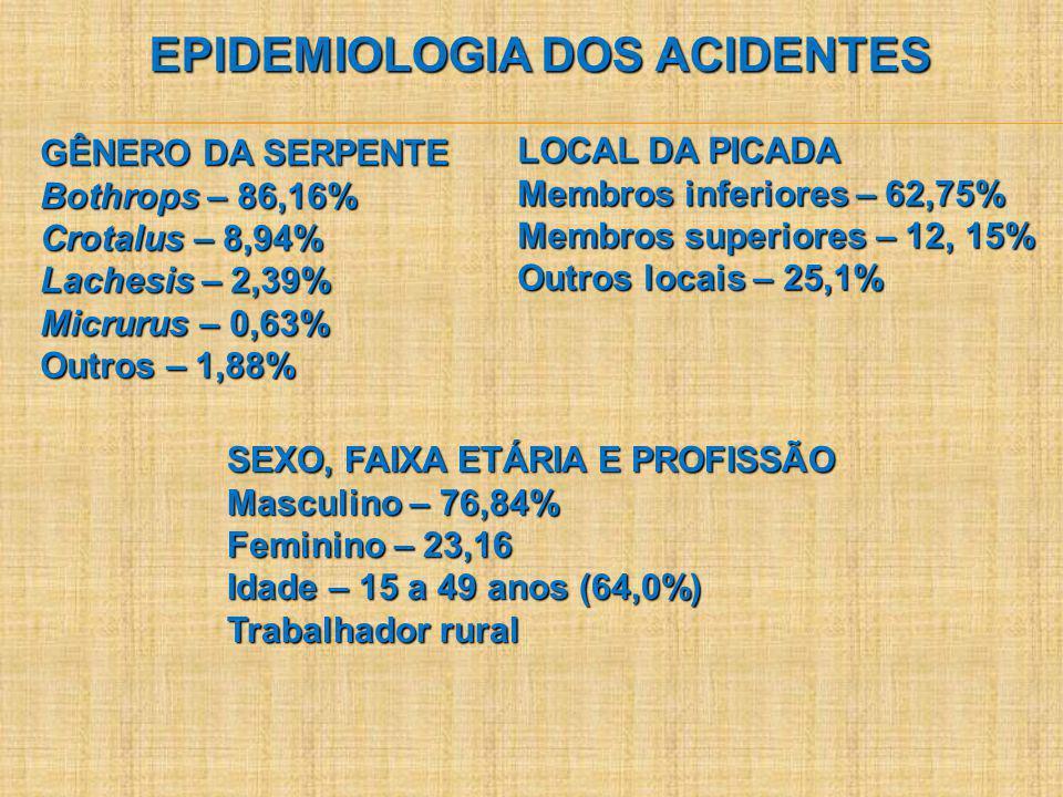 EPIDEMIOLOGIA DOS ACIDENTES