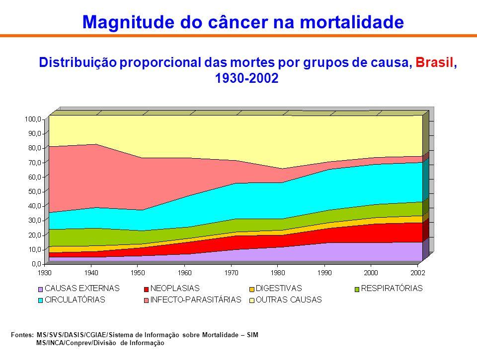 Magnitude do câncer na mortalidade