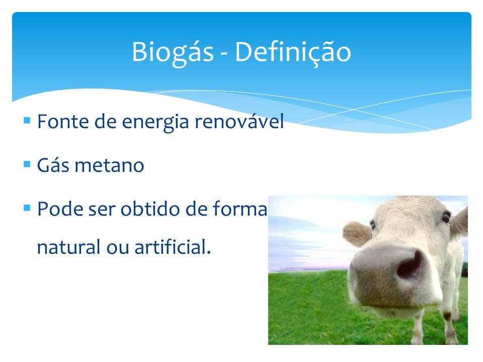 Biogás - Definição Fonte de energia renovável Gás metano