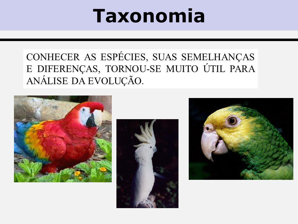Taxonomia Conhecer as espécies, suas semelhanças e diferenças, tornou-se muito útil para análise da evolução.