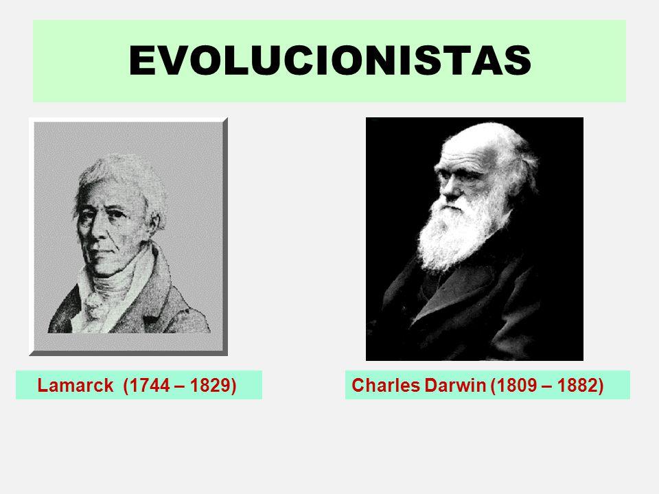 EVOLUCIONISTAS Lamarck (1744 – 1829) Charles Darwin (1809 – 1882)