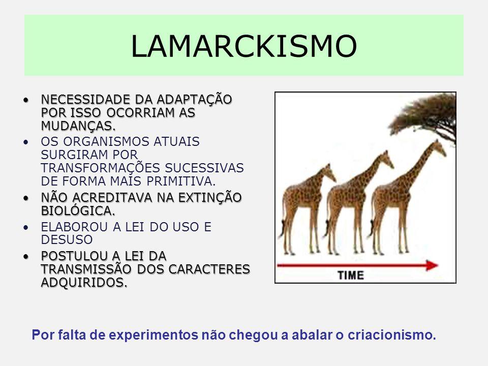 LAMARCKISMO Necessidade da adaptação por isso ocorriam as mudanças.